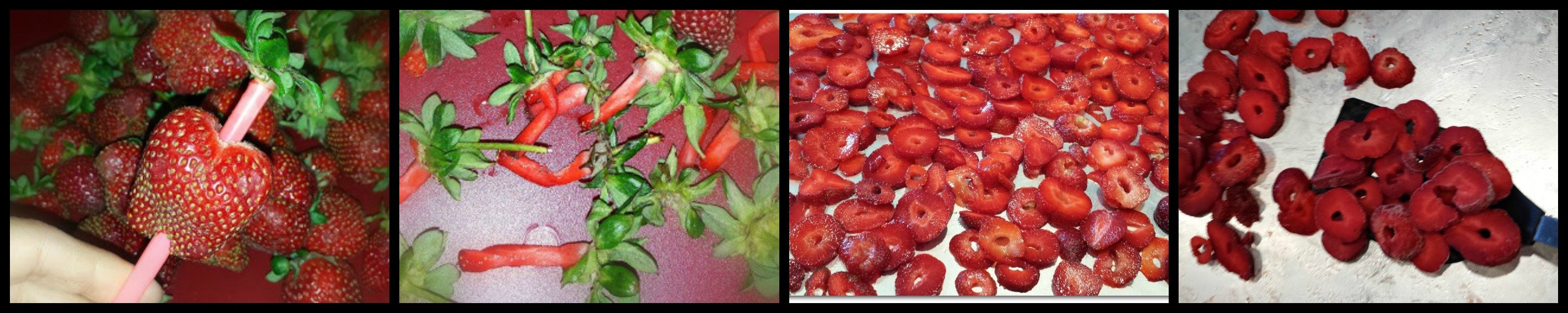 it's strawberry season y'all-collage