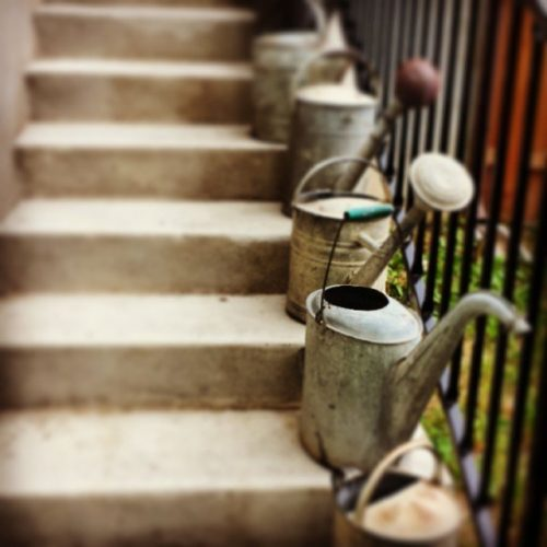 Herb garden DIY project-watering-cans