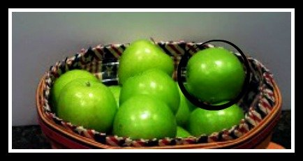apples1xx