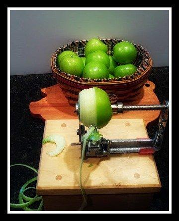 the apple experiment-peel-core-slice