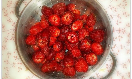 homemade freezer fruit pops