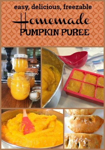 pumpkin~licious