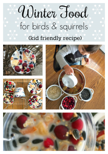 Winter feathery & furry food craft-pin board
