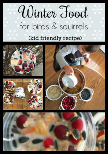 Winter feathery & furry food craft-pin board