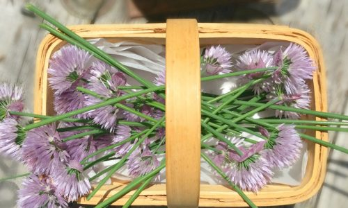 Delicious use for homegrown chives