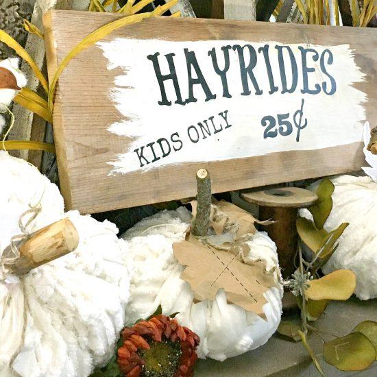 Farmhouse chic chenille pumpkins-gcc-display