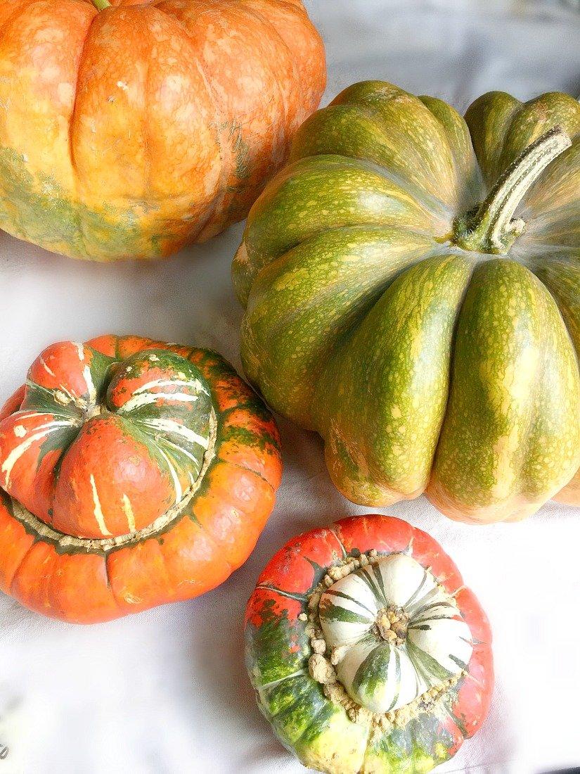 delicious fresh pumpkin empanadas-gcc-pumpkinseason