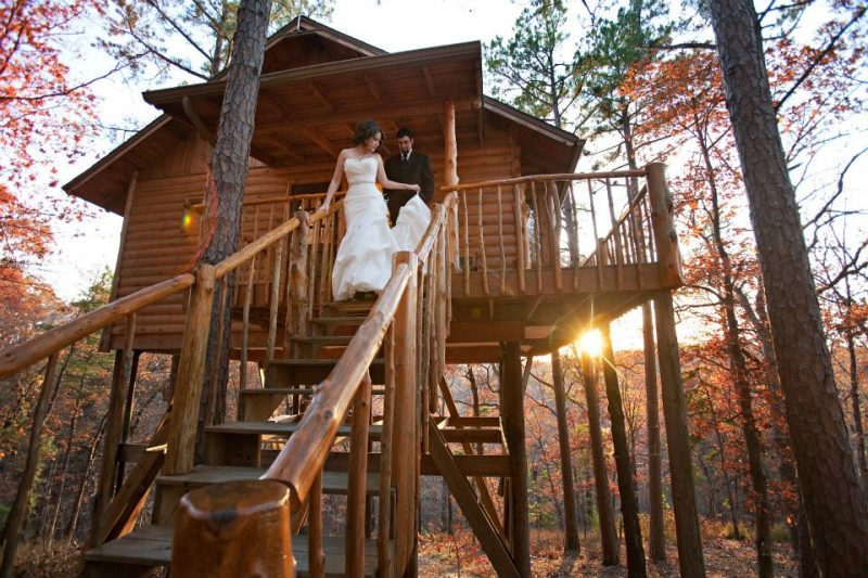 featuring a Fall wedding-treehouse