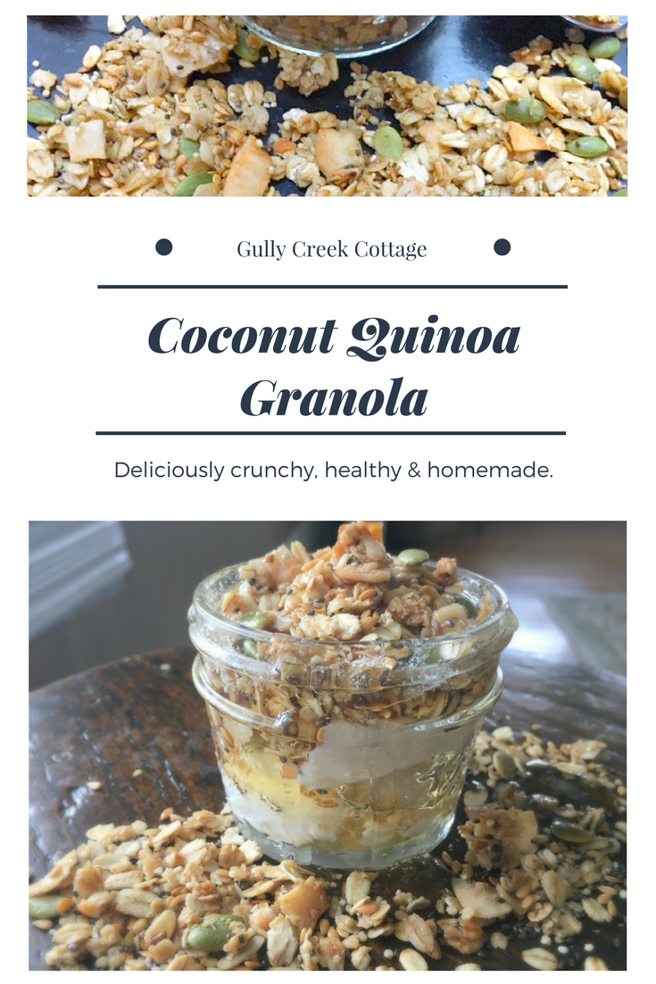 Healthy Homemade Granola (Part 2)-pin