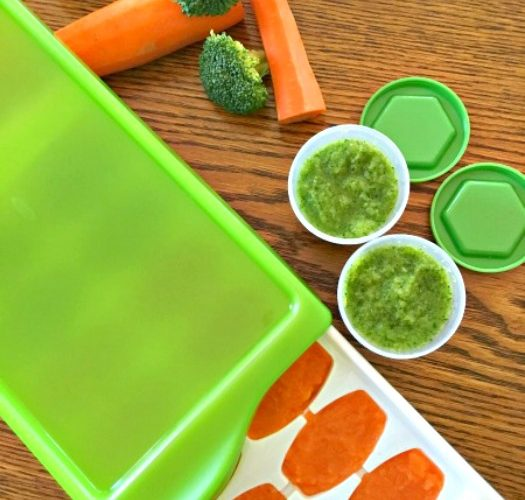 organic baby food-feature