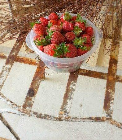 it's strawberry season y'all