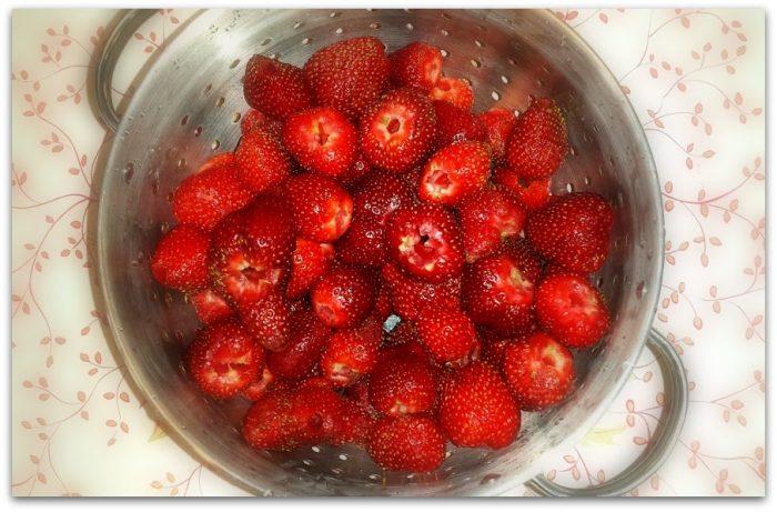 it's strawberry season y'all-berries